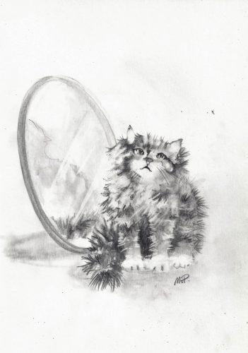 Kissa Värisyttää Häntää